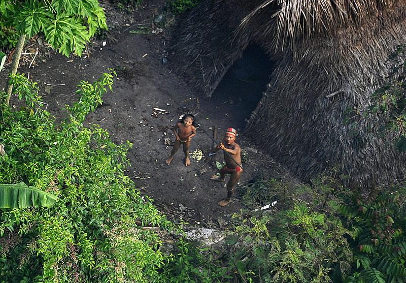 """Site desinforma ao afirmar que ministro do STF """"proíbe missionários de pregarem a tribos indígenas isoladas"""""""